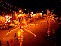 Circus Palms. Artificial Palm trees lighted in an Indian Circus venue Royalty Free Stock Photos