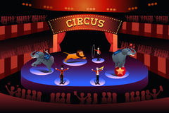 Circus performance. A vector illustration of circus performance Royalty Free Stock Photo