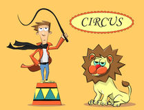 Circus performer and the lion Stock Image