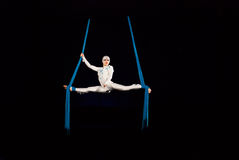 Circus performers Stock Images