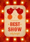 Circus poster Royalty Free Stock Image