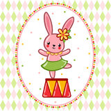 Circus rabbit on a pedestal. Royalty Free Stock Image