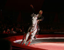 Circus rider during performance Royalty Free Stock Photos