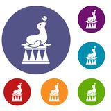 Circus seal with a ball icons set Royalty Free Stock Photography