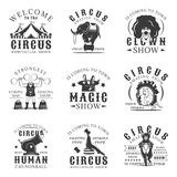 Circus set of vector vintage emblems, labels, badges and logos in monochrome style on white background. Royalty Free Stock Photo