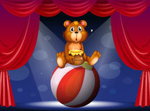A circus show with a bear Royalty Free Stock Photos