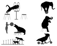 Circus show. Collection of silhouettes of animals in circus show Royalty Free Stock Photography