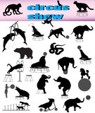 Circus show. Collection of silhouettes of animals in circus show Royalty Free Stock Photos