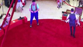 Circus show movie in red ring vedio stock video footage