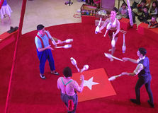 Circus show in a red ring of shopping mall Stock Photography