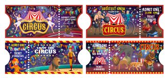 Circus Tickets, Animal Jugglers And Clowns Show Stock Photos