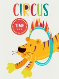 Circus tiger jumping through a ring of fire. Circus performance. Vector illustration. Circus tiger jumping through a ring of fire. Circus performance. The Royalty Free Stock Images
