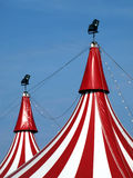 Circus in town!. Colorful circus tent against a blue sky Stock Photos