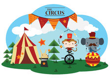 The circus Stock Image