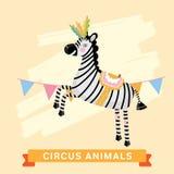 Circus Zebra, vector animal series. Royalty Free Stock Image