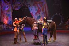 Circusuitvoerders Stock Afbeeldingen