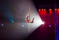 Circusuitvoerders Stock Fotografie