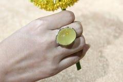 Cire d'abeille baltique et anneau ambre Photographie stock libre de droits