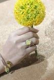 Cire d'abeille baltique et anneau ambre Images libres de droits