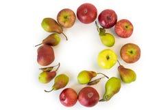 Cirkel av äpplen och päron som isoleras på vit Royaltyfria Bilder