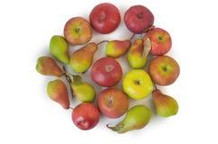 Cirkel av äpplen och päron som isoleras på vit Fotografering för Bildbyråer