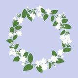 cirkel av den vita jasmin för dagen för moder` s, blommavektor royaltyfri illustrationer