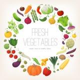 Cirkel av färgrika grönsaker stock illustrationer