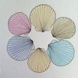 Cirkel av havsskalpennan och färgpulverteckningen Arkivbilder