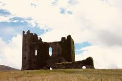 Cirkel av Kerry forntida vinrankor på den Ballycarberry slotten Royaltyfri Bild