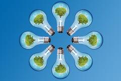 Cirkel av lampa Fotografering för Bildbyråer