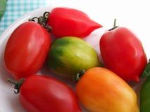 Cirkel av tomater Royaltyfria Foton