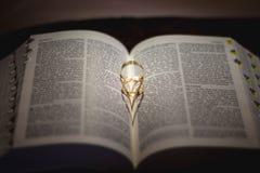 Cirkel som skjutas på bibeln Arkivfoton