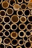 Cirkel van bamboe Royalty-vrije Stock Foto