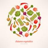 Cirkel van groenten Royalty-vrije Stock Afbeeldingen