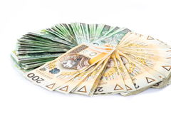 Cirkel van Pools Geld Royalty-vrije Stock Foto