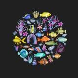 Cirkel van waterverf oceanic vissen, koralen en zeewierenornament stock illustratie