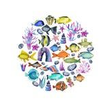 Cirkel van waterverf oceanic vissen, koralen en zeewierenornament vector illustratie