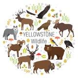 Cirkel vectorreeks planten en Yellowstone-dieren Royalty-vrije Stock Fotografie