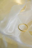 cirkelbröllop Fotografering för Bildbyråer
