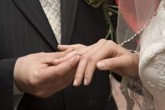 cirkelbröllop Royaltyfri Foto
