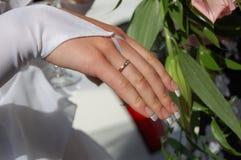 cirkelbröllop Royaltyfria Bilder