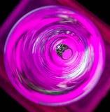 Cirkelexponeringsglas med kopplingssmyckenförälskelse, lyx, silver, valentin, weddin Arkivfoto