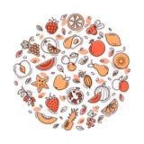 Cirkelfrukt ställde in i vektor royaltyfri illustrationer