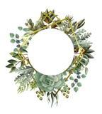Cirkelkader met bladeren, succulente en gouden elementen in waterverfstijl Eucalyptus, magnolia, varen en andere stock illustratie