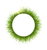 Cirkelkader met gras en zonlicht Bloemenaardachtergrond vector illustratie