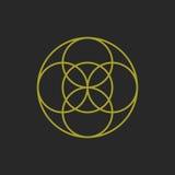Cirkellinje i cirkeln - vektor Arkivbild
