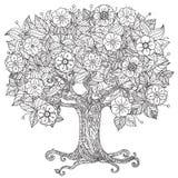 CirkelOrient blom- svartvitt Arkivfoton