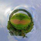 Cirkelpanorama van het park van de meermening Stock Foto
