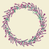 Cirkelram av hand drog lavendelblommor Royaltyfria Bilder