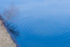 Cirkels op het water Royalty-vrije Stock Afbeelding